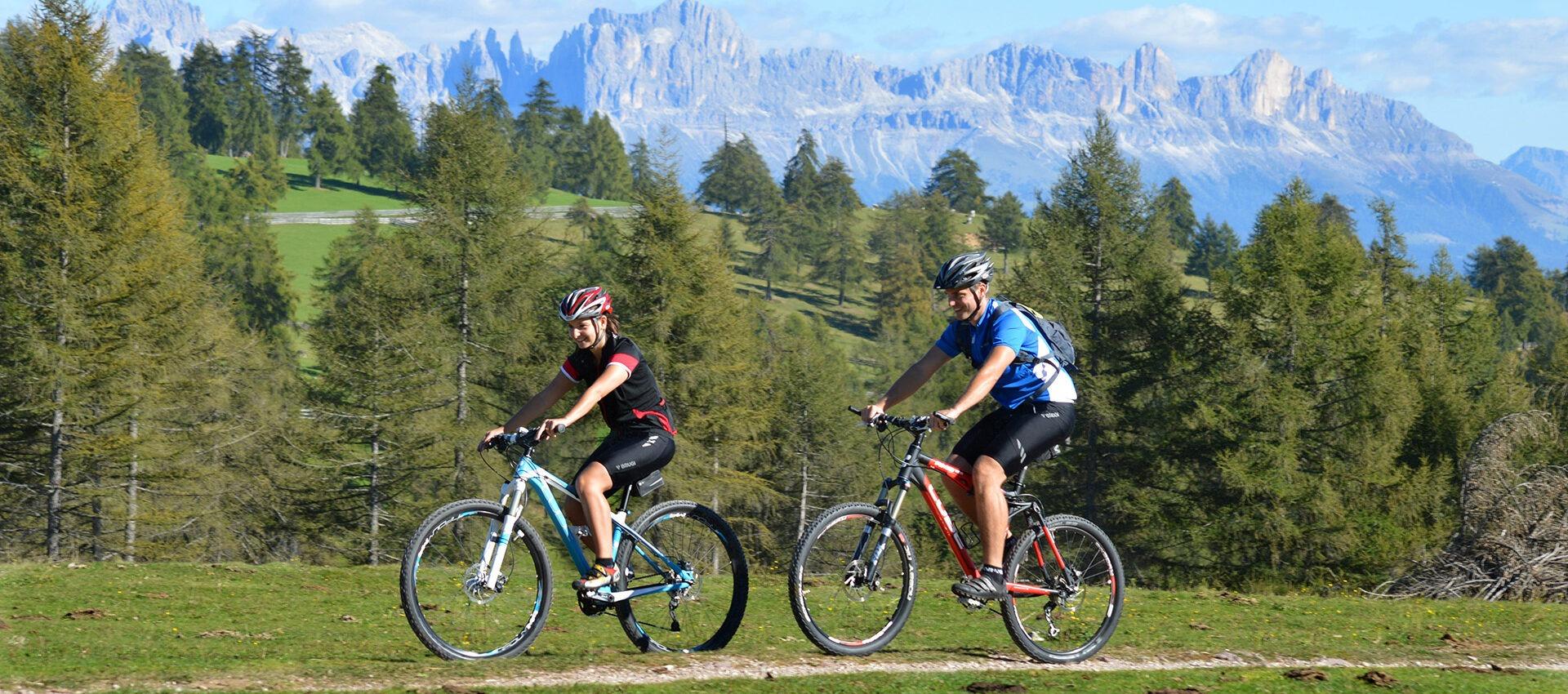 Radfahren in Südtirol, Panorama am Salten bei Meran